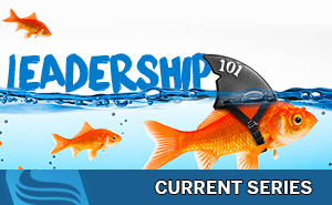 leadership101_slider_current