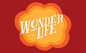 wonderlife_slider